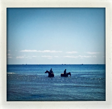 Permission to horse around in the surf.